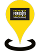 foresite-location-icon